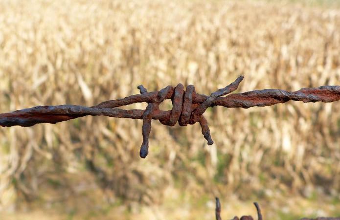 5b7e2c5-wire-196361-960-720